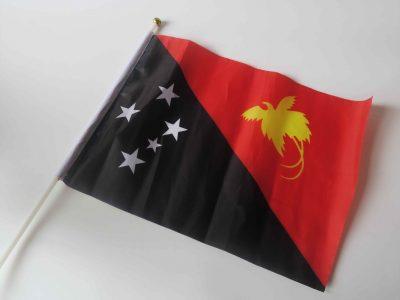 ちなみにこれがパプアニューギニアの国旗です。