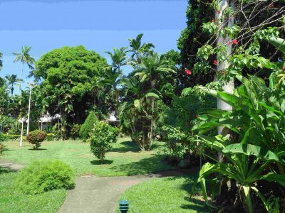 敷地はかなり広く、お庭もきちんと手入れがされています。