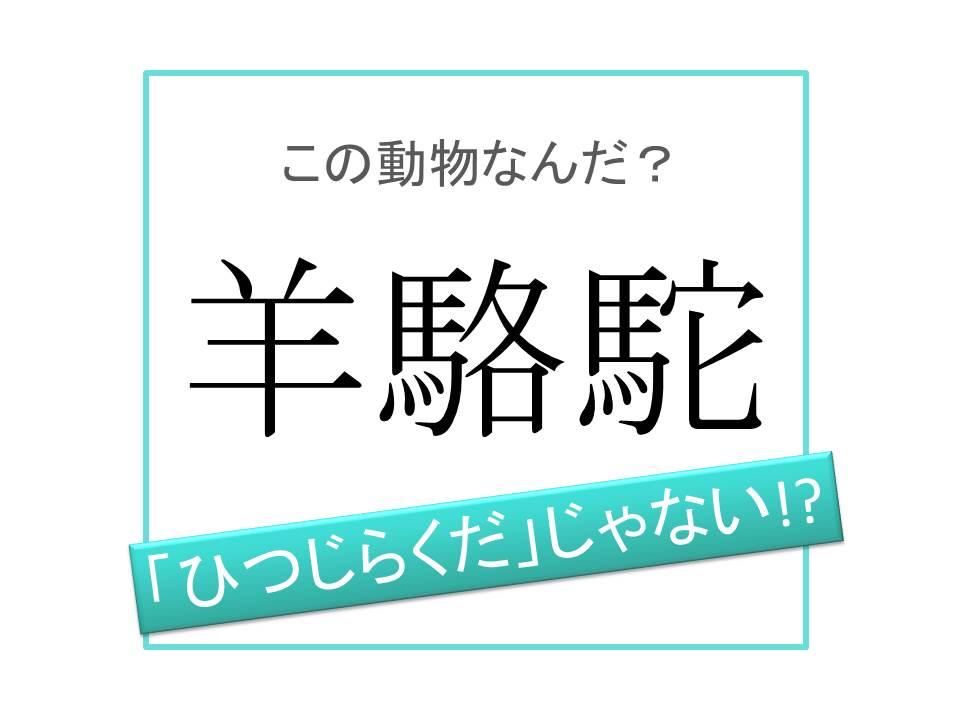 こめかみ 漢字