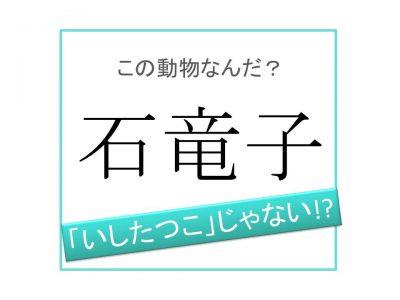 竜子 読み 石 「石竜子」って何と読む?ヒントは竜の子みたいな格好の生き物。気になる正解は…?