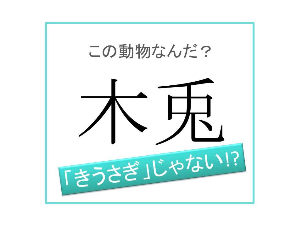 漢字 うさぎ 卯・兎・兔・うさぎ・ウサギ(1):兔(兎)の字は、後ろからウサギを書いた象形文字